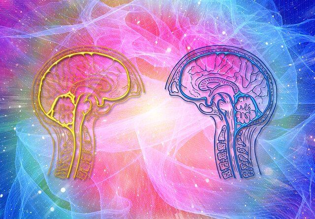 Cognitieve achteruitgang gaat minder snel bij mensen die gezond eten 1