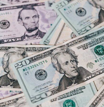 Financiële tegemoetkoming Q-koorts helpt ten dele 1